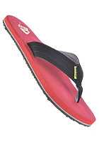 REEF Quencha TQT black/red