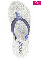 REEF Womens Phoenix Sandals blue/grey