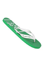 RIP CURL Aggrolite Nbu Sandals white/green