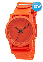 RIP CURL Cambridge Webbing Surf Watch red