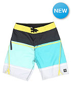 RIP CURL Kids Aggrosection Fixed Waist 17