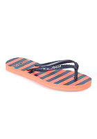 RIP CURL Kids Mini Mix navy/coral