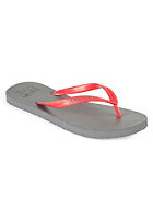 RIP CURL M C red/grey