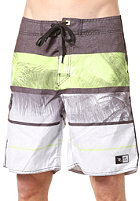 RIP CURL Paradise 19 Boardshort green