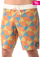 RVCA Barry Boardshort multi