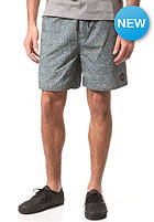 RVCA Raggered Robin Boardshort blue