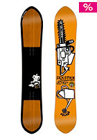 SALOMON Sickstick 166cm multicolor