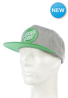 SANTA CRUZ Reverse Dot Cap heather/mint green