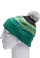 SPECIAL BLEND Townie Beanie 2012 mojito