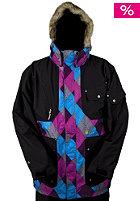 Utility Snow Jacket 2010 gnargyle