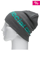 SPECIAL BLEND Woodmark Beanie greyskull