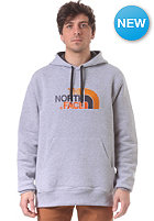THE NORTH FACE Drew Peak Hooded Sweat heather grey/asphalt grey