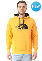 THE NORTH FACE Drew Peak Hooded Sweat tnf yellow