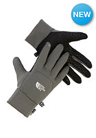 THE NORTH FACE Etip Gloves black ink green
