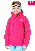 THE NORTH FACE Evolution Triclimate Jacket razzle pink
