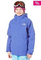 THE NORTH FACE Evolution Triclimate Jacket vibrant blue