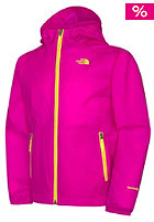 THE NORTH FACE Kids Altimont Hooded Jacket azalea pink