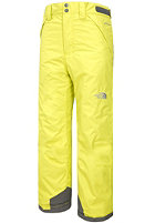 THE NORTH FACE Kids Freedom Insulated Open Gate Jacket sulphur spring green