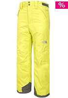 THE NORTH FACE Kids Freedom Insulated Open Gate Pant sulphur spring green