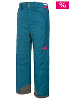 THE NORTH FACE Kids Freedom Insulated Pant prussian blue