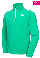 THE NORTH FACE Kids Glacier 1/4 Full Zip Fleece Jacket blarney green