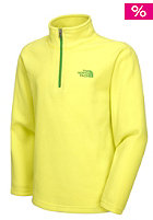 Kids Glacier 1/4 Full Zip Fleece Jacket sulphur spring green/flashlight green