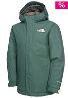 THE NORTH FACE Kids Insulated Open Gate Jacket dark sage green
