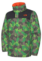 THE NORTH FACE Kids Rockcam Resolve Jacket tree frog green print