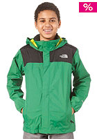 THE NORTH FACE Resolve Jacket arden green