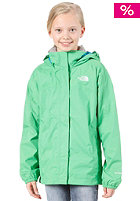 THE NORTH FACE Resolve Jacket mojito green
