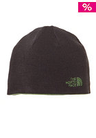 THE NORTH FACE  Rev TNF Banner Beanie conifer green