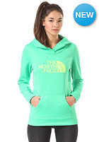 THE NORTH FACE Womens Sergent Hooded Sweat surreal green