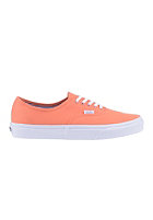VANS Authentic (deck club) fre