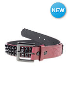 VANS Studded Belt burgundy/black