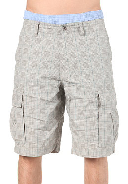 VANS Terrain Cargo Shorts lunar rock
