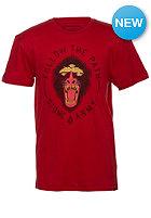 VOLCOM Kids Badboon Lightweight S/S T-Shirt drip red