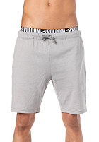VOLCOM TimemachIne Short slate
