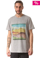 WLD Craving For Mountains S/S T-Shirt grey melange