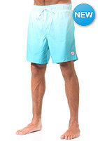 Surf Lights Boardshort blue dip dye