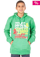 ZIMTSTERN Herbie Hooded Sweat green