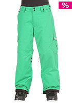 ZIMTSTERN Kids Boys Youngstar Pant Young green
