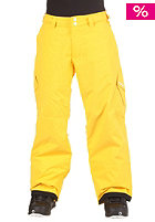ZIMTSTERN Kids Boys Youngstar Pant Young yellow