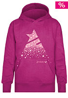 ZIMTSTERN Kids Falldown Hooded Sweat raspberry