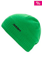 ZIMTSTERN Logo 13 Beanie green