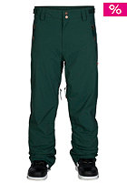 ZIMTSTERN Ted Snow Pant pine