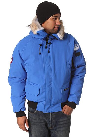 canada goose chilliwack pka polar bear int jacket f r. Black Bedroom Furniture Sets. Home Design Ideas